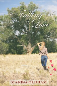 The Falling of Love Cover ebook cover 1667x2500